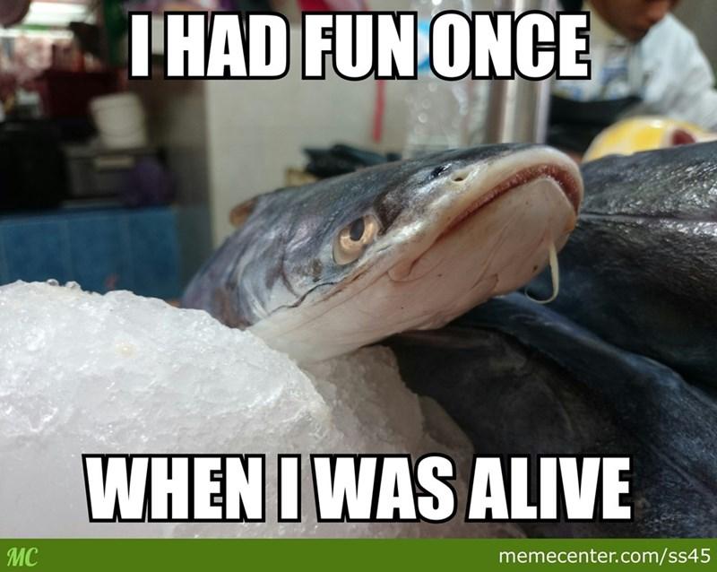 Fish - THAD FUN ONCE WHENI WAS ALIVE MC memecenter.com/ss45
