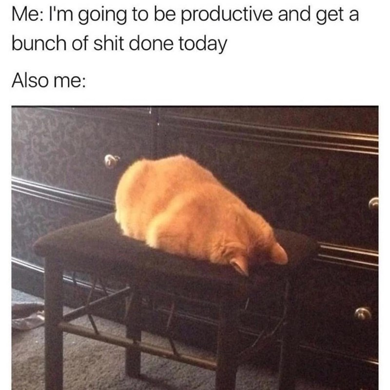 Funny meme about when you want to be productive but still don't do shit.