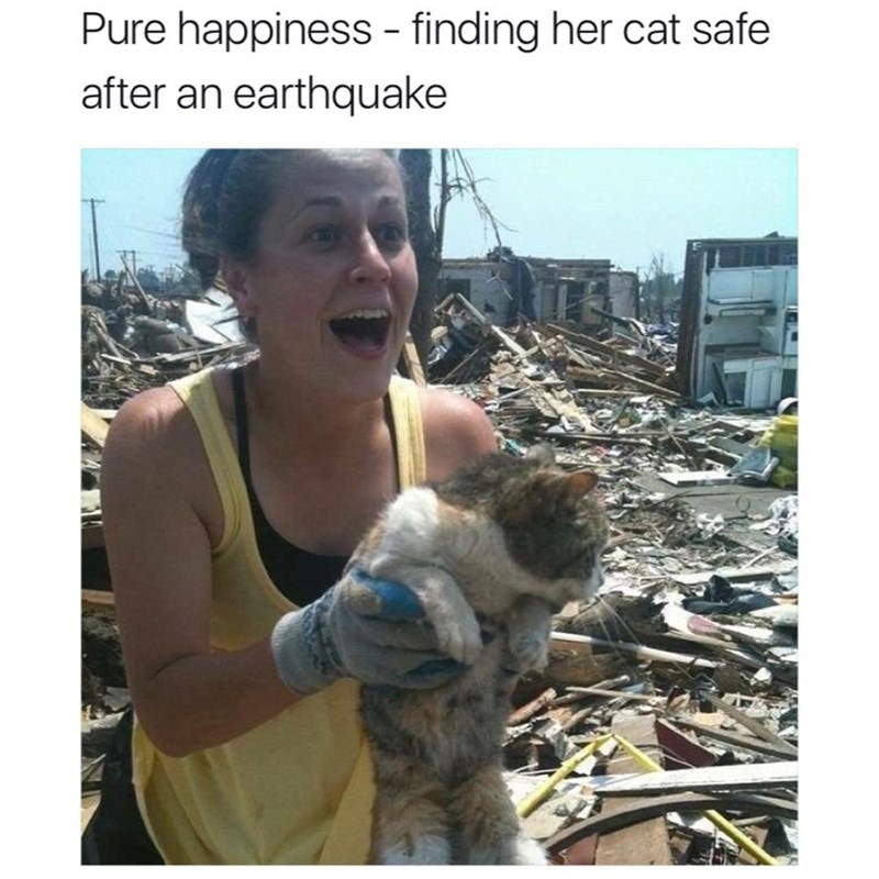 Adaptation - Pure happiness - finding her cat safe after an earthquake