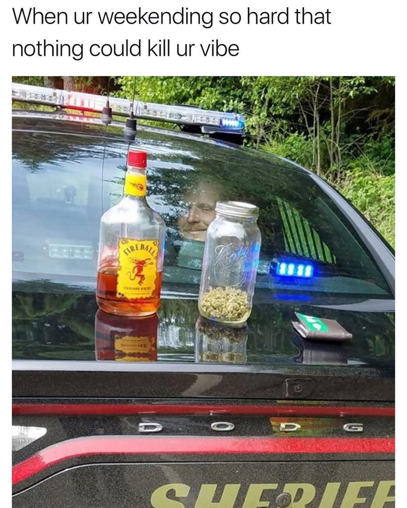 Funny meme of a man smiling in the back of a police car, with a bottle of Fireball cinnamon whiskey and a jar of marijuana on top of the car.