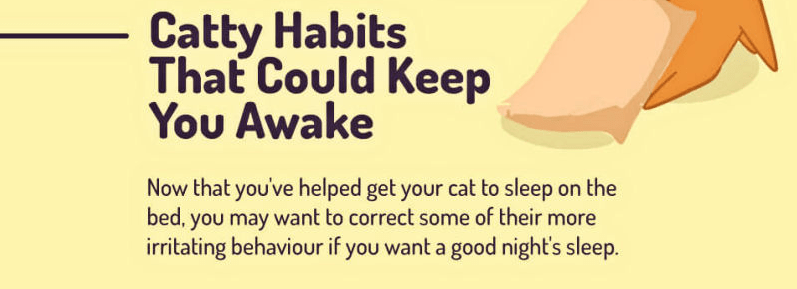 Things cat might do to disrupt your sleep.