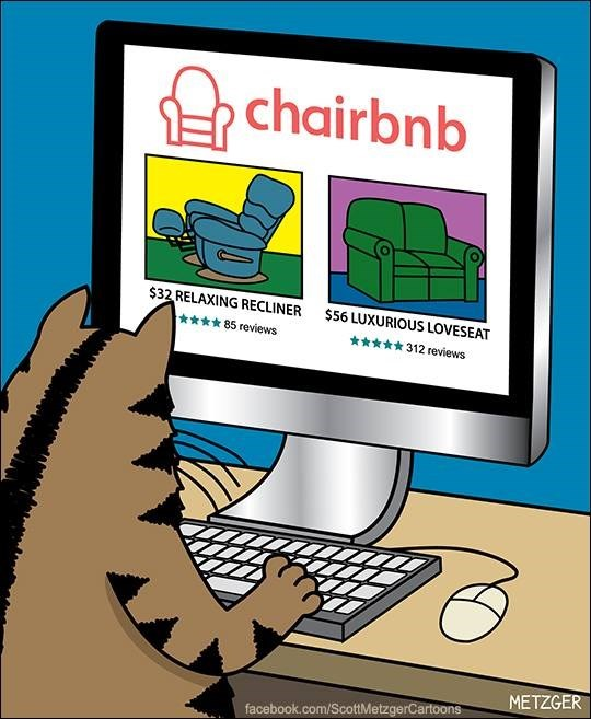 Cat visits the website CHAIRBNB to find a place to stay on vacation, like a cat version of AirBNB