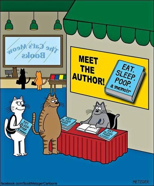 Cat author of Eat Sleep Poop