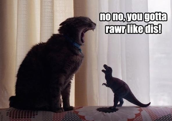 a funny meme of a cat teaching a toy dinosaur how to roar