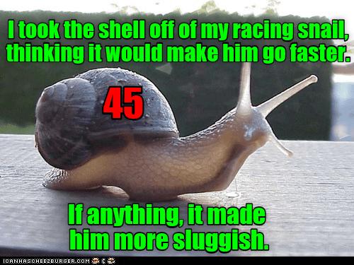 puns meme slug - 9052237568