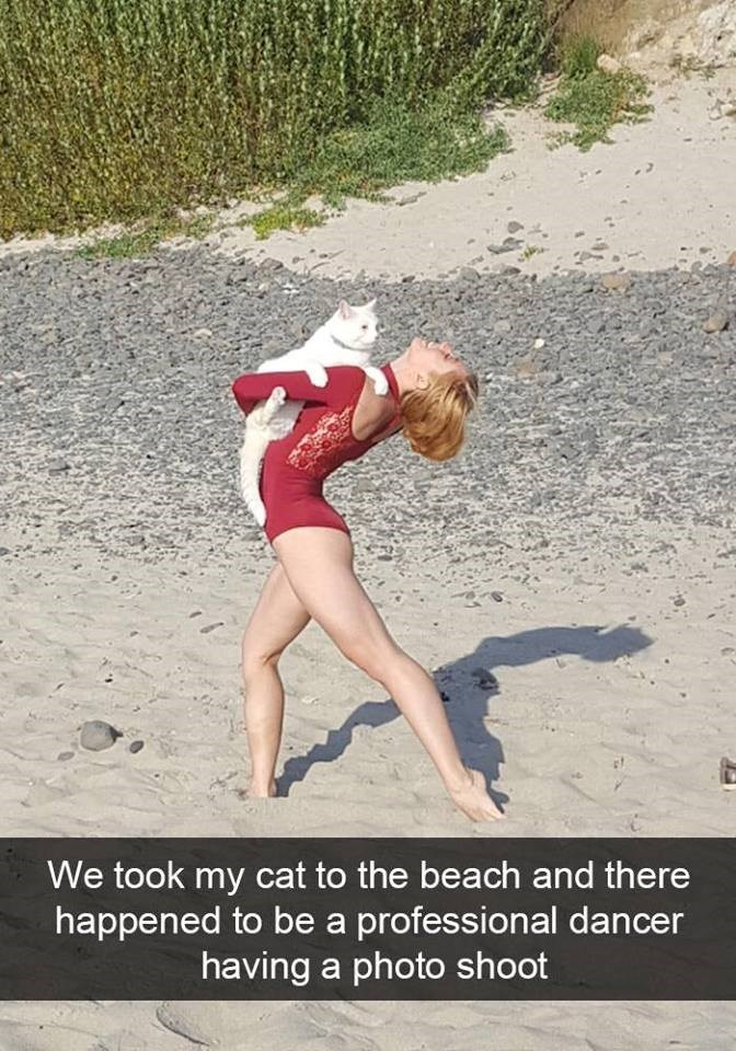Fun - We took my cat to the beach and there happened to be a professional dancer having a photo shoot