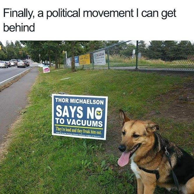 Funny meme of a dog next to a political sign that says he is against vacuums because they are loud and they freak him out.