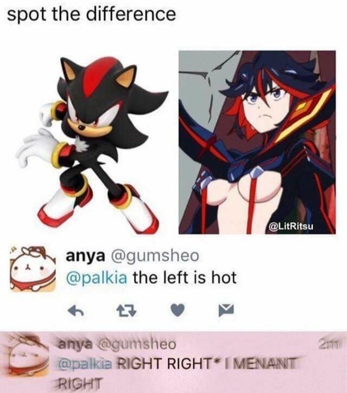 Funny meme about someone asking who is hotter, person accidentally chooses character from Sonic instead of hot anime girl.