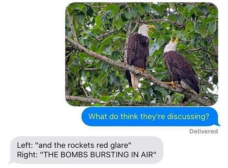 Funny text exchange meme featuring two bald eagles that look like they are talking, one person says they are singing the lyrics of the national anthem.