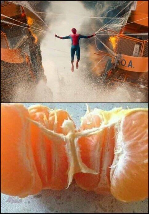 Orange - OA.