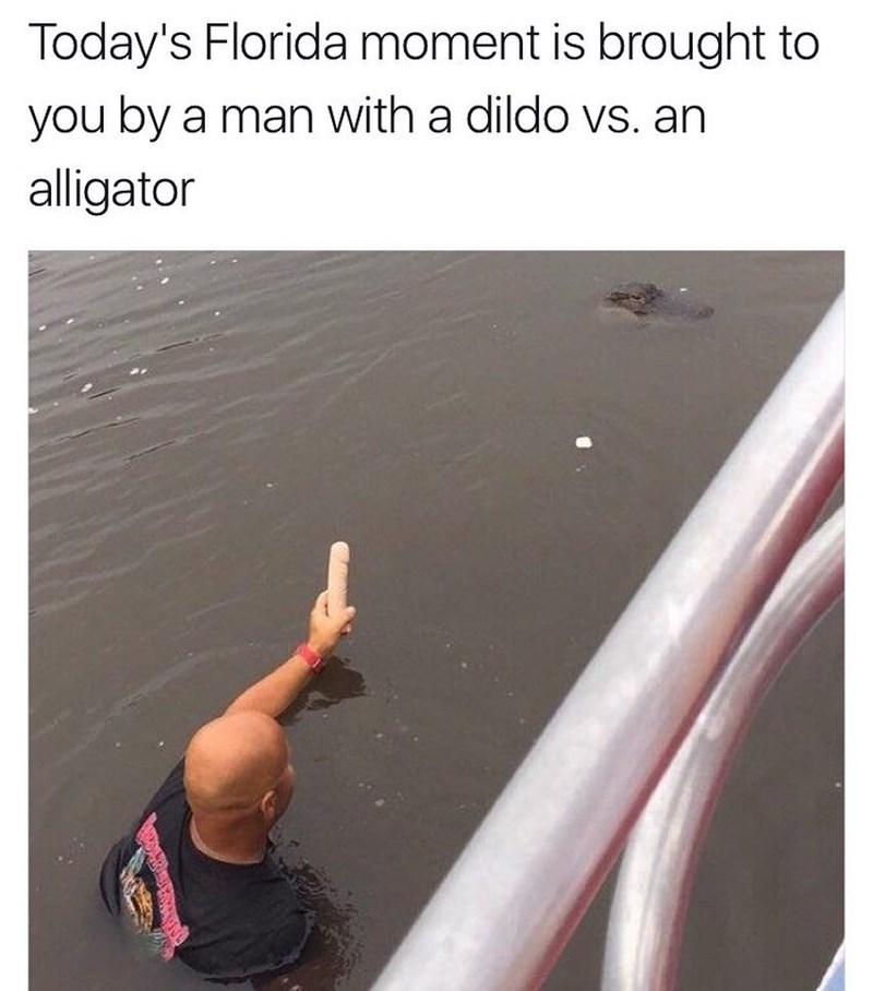 funny meme about florida, alligator man and dildo photo.