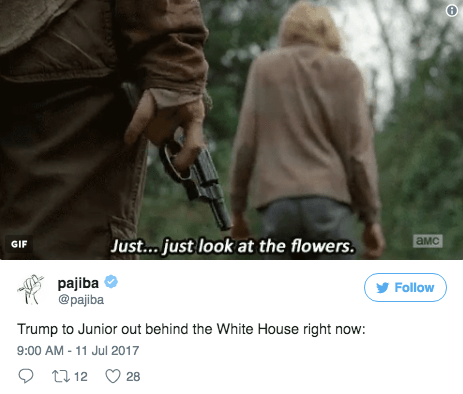 Product - амс Just... just look at the flowers. GIF pajiba @pajiba Follow Trump to Junior out behind the White House right now: 9:00 AM -11 Jul 2017 t 12 28