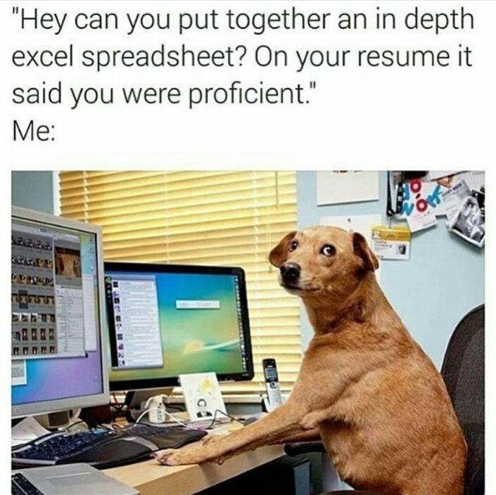 Funny meme about lying on your resume featuring a dog on a computer.