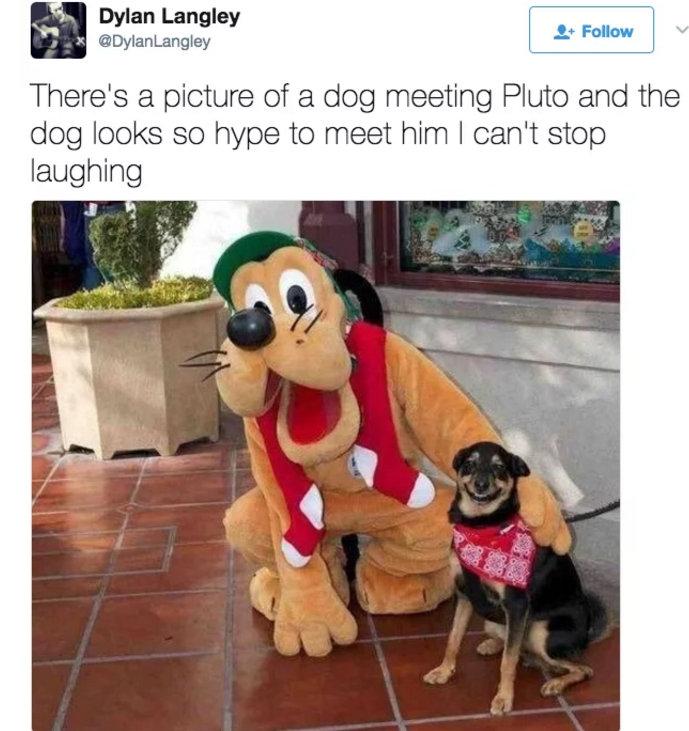 Tweet of dog meeting Pluto and taking pic