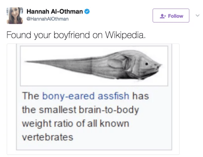 Tweet of the bony eared assfish which has smallest brain to body ratio