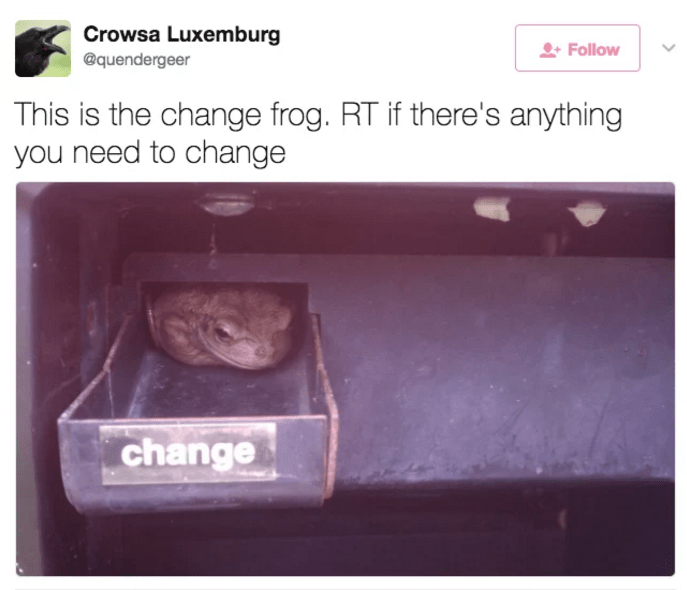Frog in the change tray, tweet asking for RT if you there is anything you need to change.