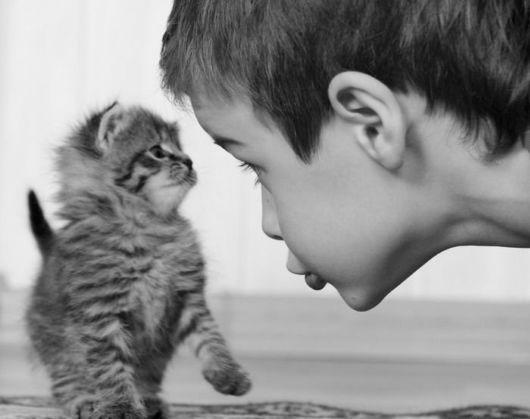 Kid and kitten stare off
