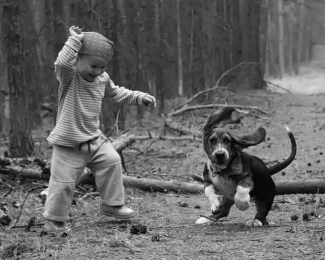 Kid and dog running
