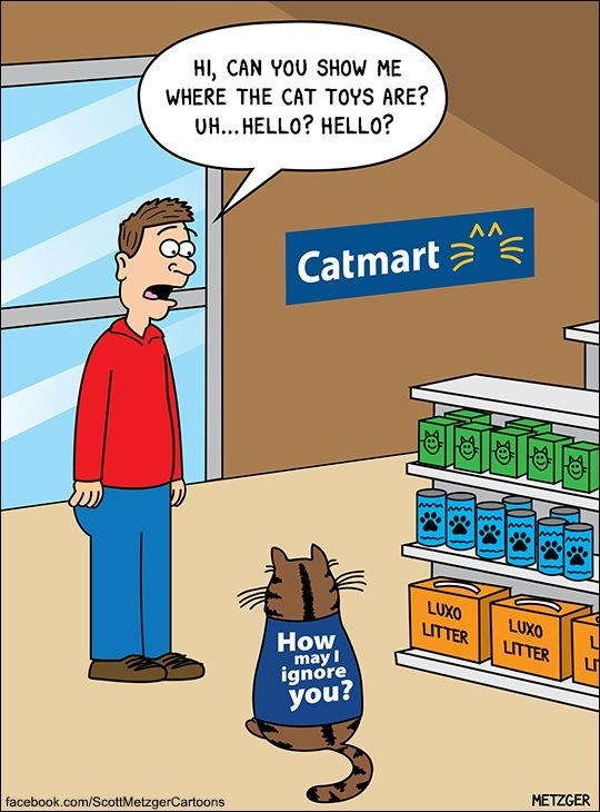 Scott Metzger cartoon of Catmart that cats are just ignoring everyone.