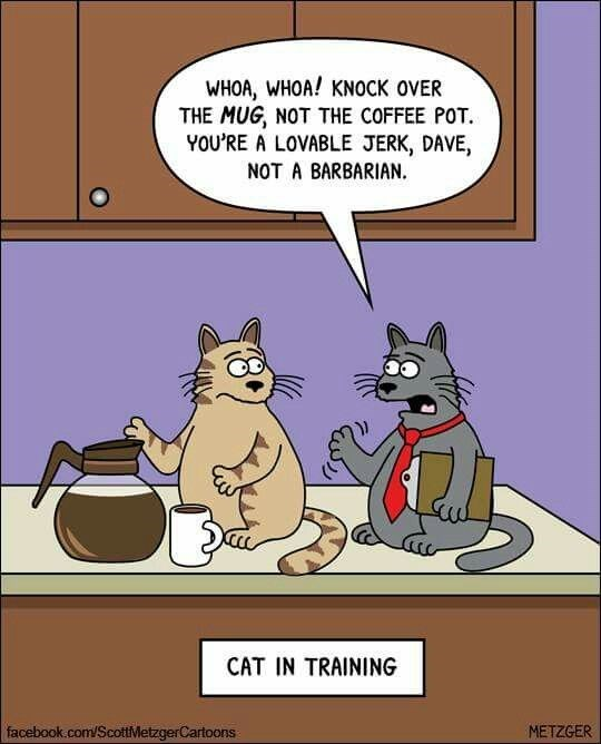 Scott Metzger cartoon about cat training to be a lovable jerk, not a barbarian.