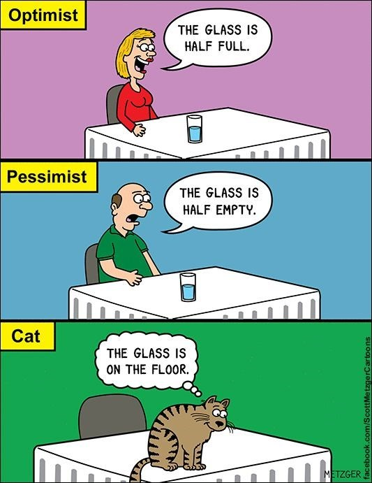 Scott Metzger of cat vs the optimists and the pessimist