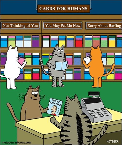 Scott Metzger cartoon of cats buying cards for their humans.