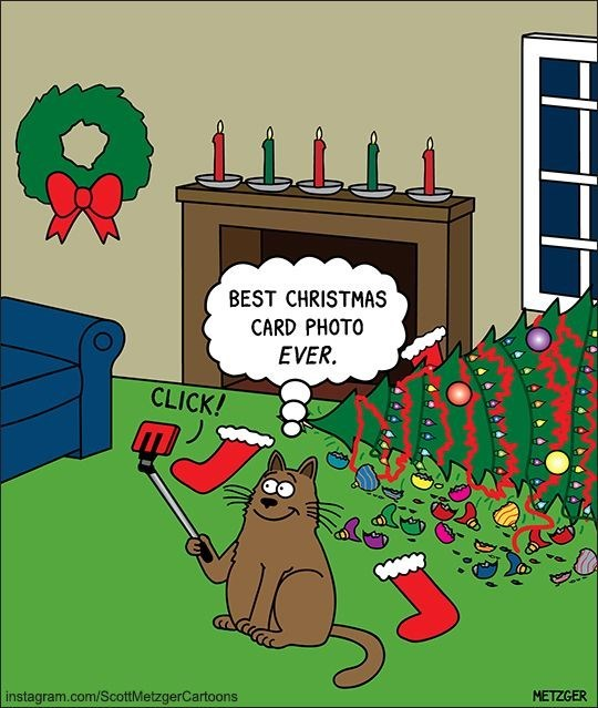 Scott Metzger cartoon of a cat taking a selfie next to the Christmas tree that he knocked down.