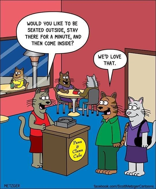 Very funny Scott Metzger cartoon about cat restaurant.