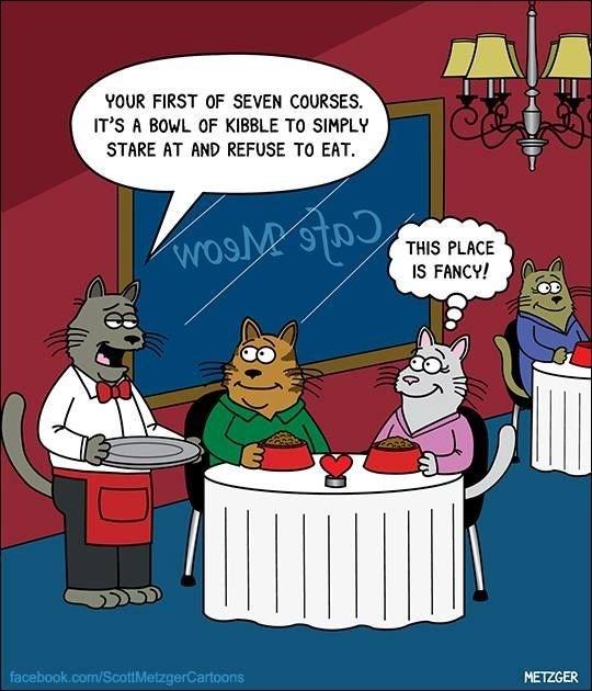 Scott Metzger cartoon about a fancy cat restaurant.