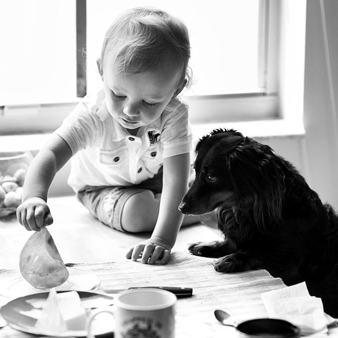 Dog and kid playing real nicely together