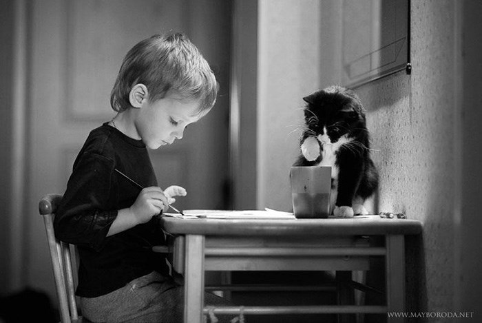 Cat helping a kid do his homework.