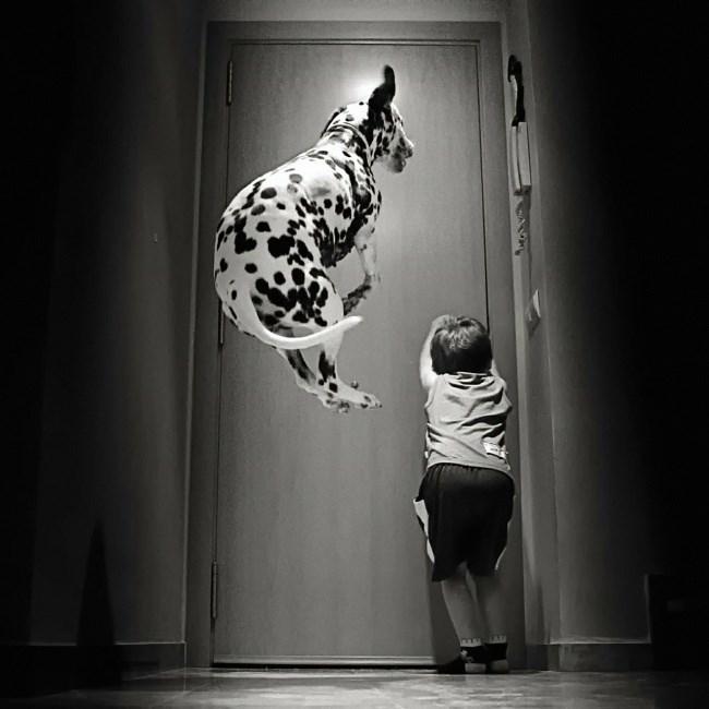 Kid and dog excited to get that door open.