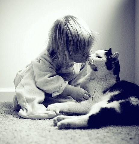 Girl kissing a cat