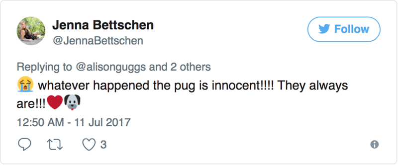 Text - Jenna Bettschen Follow @JennaBettschen Replying to @alisonguggs and 2 others whatever happened the pug is innocent!!!! They always are!!! 12:50 AM - 11 Jul 2017 3