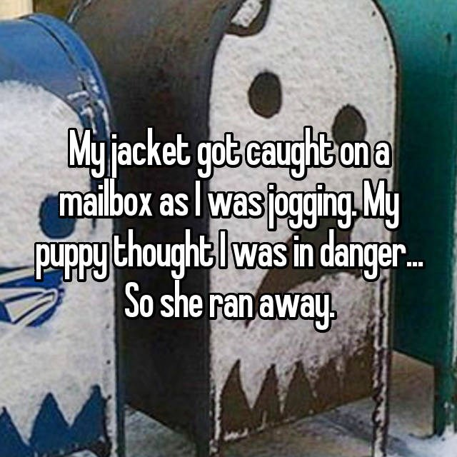 Font - My jacket gotcaughbona maibox as wasfogingMy puRpy thoughtlwas in danger So she ranaway.