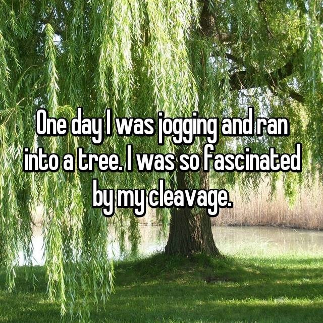 Tree - One day was ogging and ran into atree.I was so fascinated by mydleavage