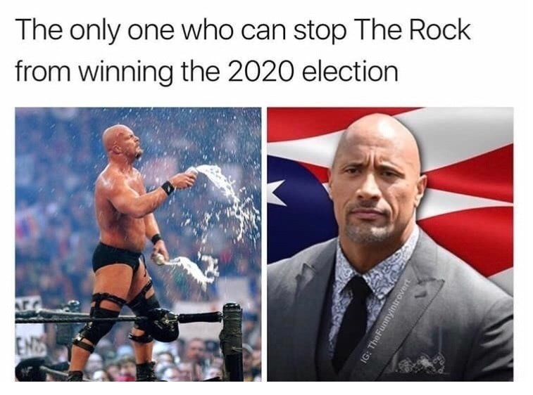 Professional wrestling - The only one who can stop The Rock from winning the 2020 election EN IG: The Funnyintrovert