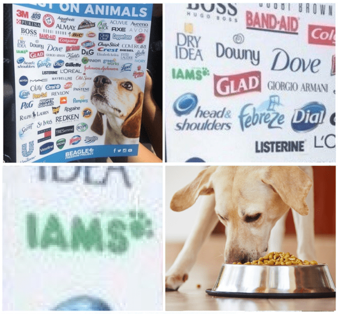Meme of dank quality of IAMS testing on animals and pic of dog nom noms on dogfood