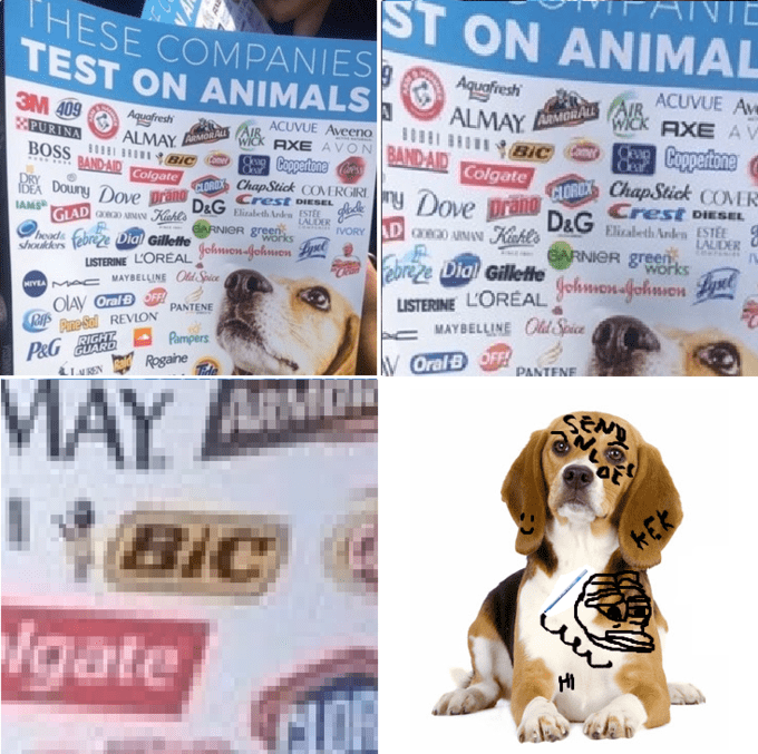 Dank meme about how Bic is one of the brands that tests on animals and graphic of dog that is doodled on.