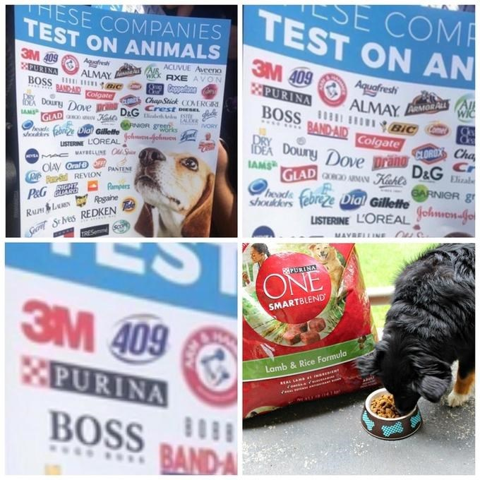 dank meme making fun of poster that Purina is tested on animals