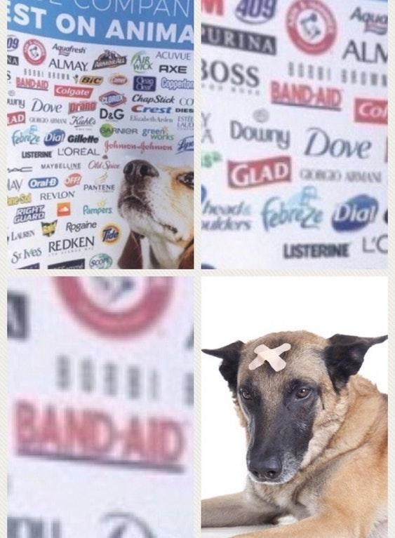 dank meme of band aid testing on animal with pic of dog with x shaped bandaids