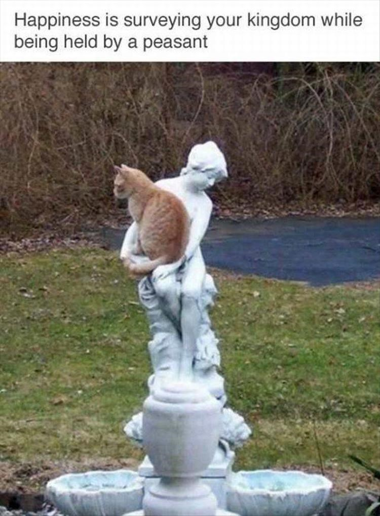 animal meme - Sculpture - Happiness is surveying your kingdom while being held by a peasant