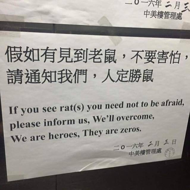 Funny meme of a sign in chinese, translated it's about rats - saying they will overcome the rats because we are heroes and they are zeroes.