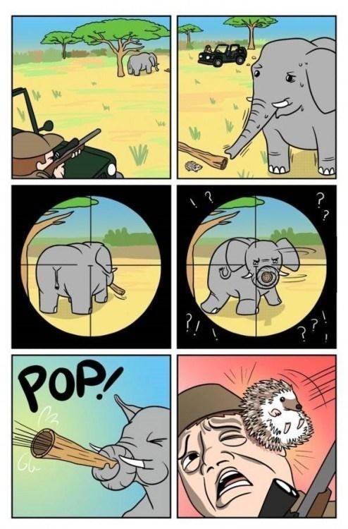 cazador cazando elefante es atacado por este