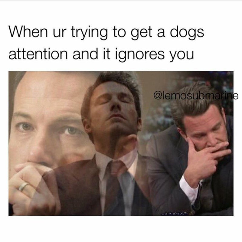 Funny meme about when you try to get a dog's attention and it ignores you, photos of Ben Affleck looking sad.