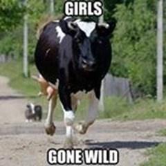 Vertebrate - GIRLS GONEWILD