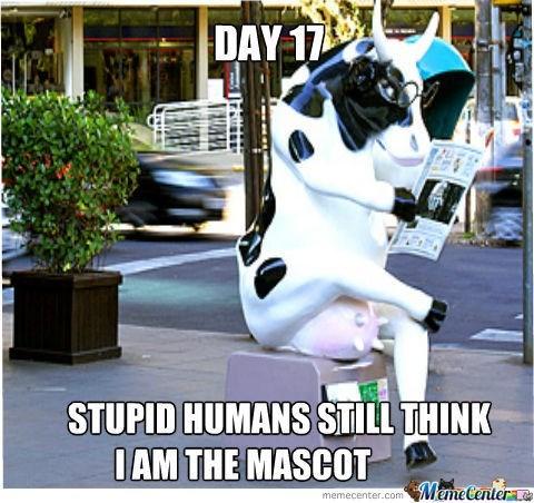 Photo caption - DAY 17 STUPID HUMANSSTILL THINK OAM THE MASCOT MemeCentera memecenter.com