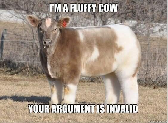 Mammal - I'MA FLUFFY COW YOUR ARGUMENTIS INVALID quickmemeco