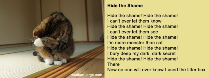 poem - Cat - Hide the Shame Hide the shame! Hide the shame! I can't ever let them know Hide the shame! Hide the shame! I can't ever let them see Hide the shame! Hide the shame! I'm more monster than cat Hide the shame! Hide the shame! I bury deep my dark, dark secret Hide the shame! Hide the shame! There Now no one will ever know I used the litter box medium-large.com
