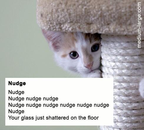 poem - Cat - Nudge Nudge Nudge nudge nudge Nudge nudge nudge nudge nudge nudge Nudge Your glass just shattered on the floor medium-large.com